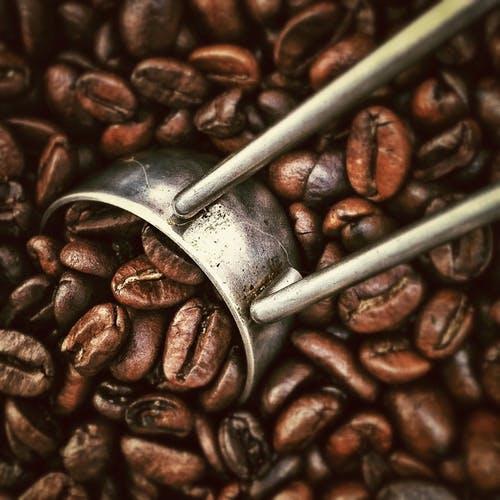 De heerlijkste koffie koop je hier